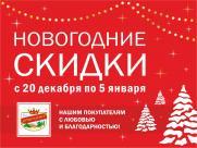 Новогодние скидки в магазинах ТМ